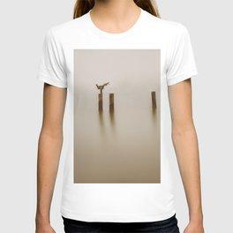 A Sculpture T-shirt