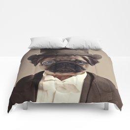 (Very) Distinguished Dog Comforters