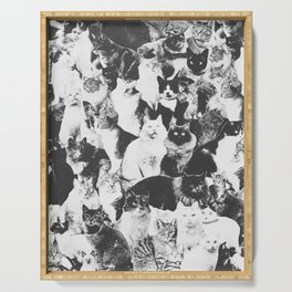 Cats Forever B&W Serving Tray