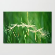 Free As We'll Ever Be  Canvas Print