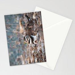 Nesting Killdeer Stationery Cards