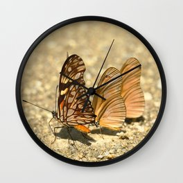 butterfly (Dione juno and Dryas julia) Wall Clock