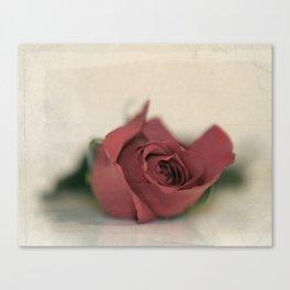 Single Rose fine art photography Canvas Print
