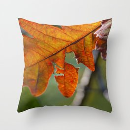 Change in Seasons (Fall Leaves) Throw Pillow