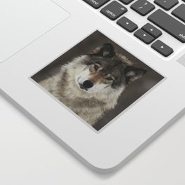 Winter Wolf Sticker
