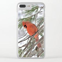 Snow Globe Cardinal Clear iPhone Case