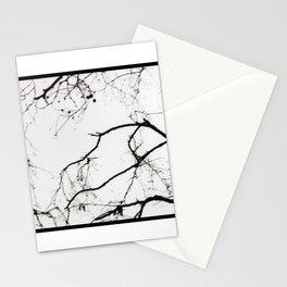 Tree Limbs Stationery Cards