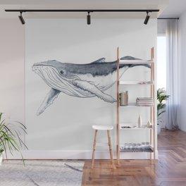 Baby humpback whale (Megaptera novaeangliae) Wall Mural