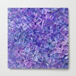 Lilac Petals Metal Print