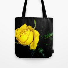 Embrace Our Friendship Tote Bag