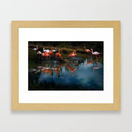 Flamingo Convention Framed Art Print