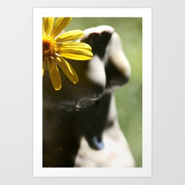 The daisies in her hair  Art Print