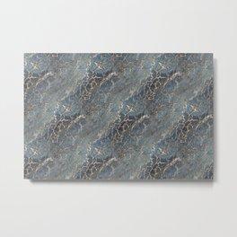 003.4 Metal Print
