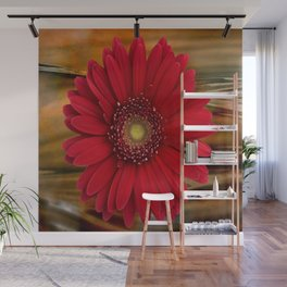 Red Daisy Abstract Wall Mural