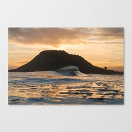 Matakana Gold Canvas Print