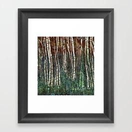 :: Wild in the Woods :: Framed Art Print