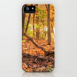 Autumn Backlight iPhone Case