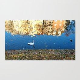 Reflector Swan I Canvas Print