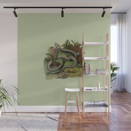 Snake Wildlife Illustration Wall Mural