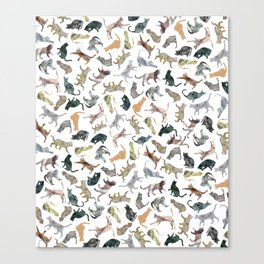 Nature Cats Canvas Print