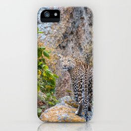 Are you checking me out? iPhone Case