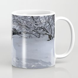 Homestead Crater Coffee Mug