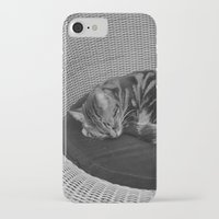 sofa iPhone & iPod Cases featuring sleeping cat on sofa by gzm_guvenc