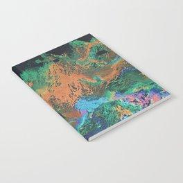 RADRCAST Notebook