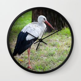 White Stork on a Meadow Wall Clock