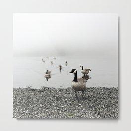 Canadian Geese + Fog Metal Print