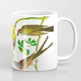 Vintage Scientific Bird Butterfly & Floral Illustration Coffee Mug