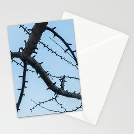 Beautiful Ginkgo Biloba branches Stationery Cards
