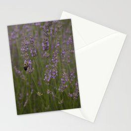 Busy Lavender Bee Stationery Cards