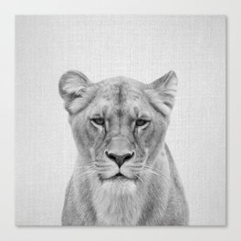 Lioness - Black & White Canvas Print