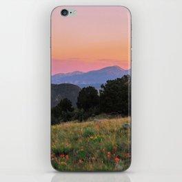 Meet Me in the Meadow iPhone Skin
