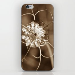 BY DESIGN iPhone Skin