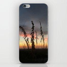 Beachgrass at Sunset iPhone Skin