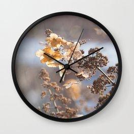 Sunlight through Dried Flowers Wall Clock