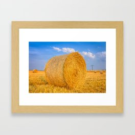 Haye bale in the harvest time Framed Art Print