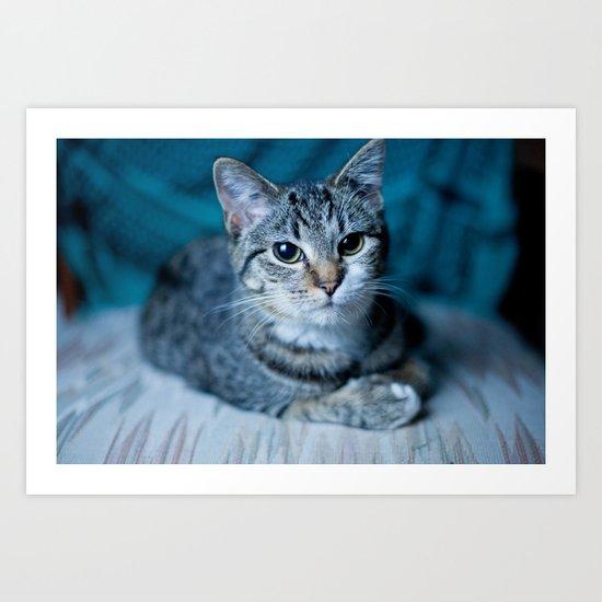lover cat Art Print