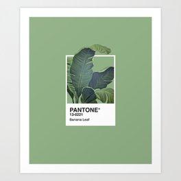 Pantone Series – Banana Leaf Art Print