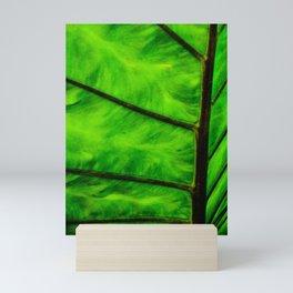 Leaf veins Mini Art Print