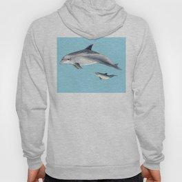 Blue Bottlenose dolphin Hoody