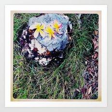 Natures Stool Art Print