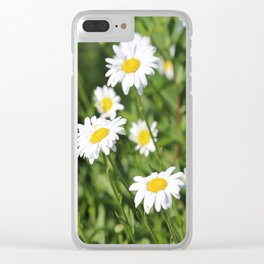 Daisy Daze Clear iPhone Case
