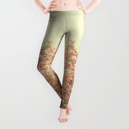 The Day is Done Leggings
