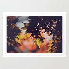 Fall dreams Art Print