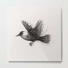 Flying jackdaw Metal Print