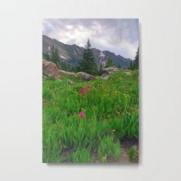 High Alpine Wildflowers Metal Print
