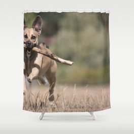 Playing Fetch Shower Curtain